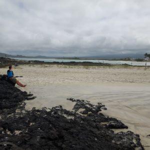 Reise Hunter Galapagos Isabela Bucht D