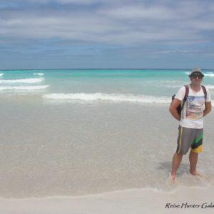 Reise Hunter Galapagos TortugaBay D