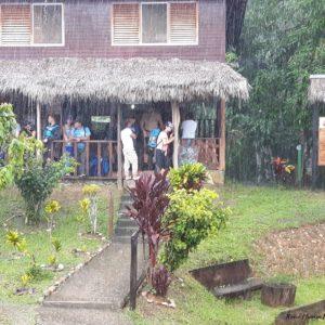 Reise Hunter Amazonas Regenschauer