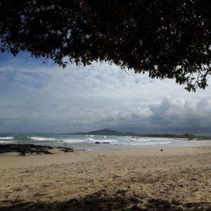 Reise Hunter Galapagos Isabela Strand2