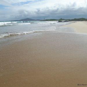 Reise Hunter Galapagos Isabela Strand