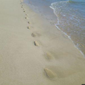 Reise Hunter Galapagos Isabela StrandFüße