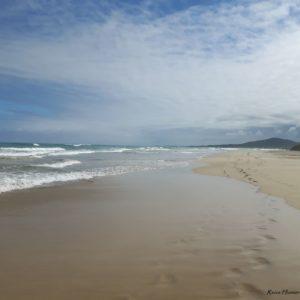 Reise Hunter Galapagos Isabela Strand3