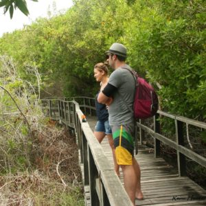 Reise Hunter Galapagos Islabela Ausflug
