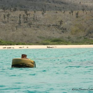 Reise Hunter Galapagos Santa Fe Bucht