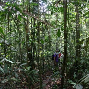 Reise Hunter Ecuador Amazonas Wanderung