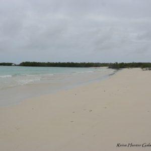 Reise Hunter Galapagos Santa Fe Strand