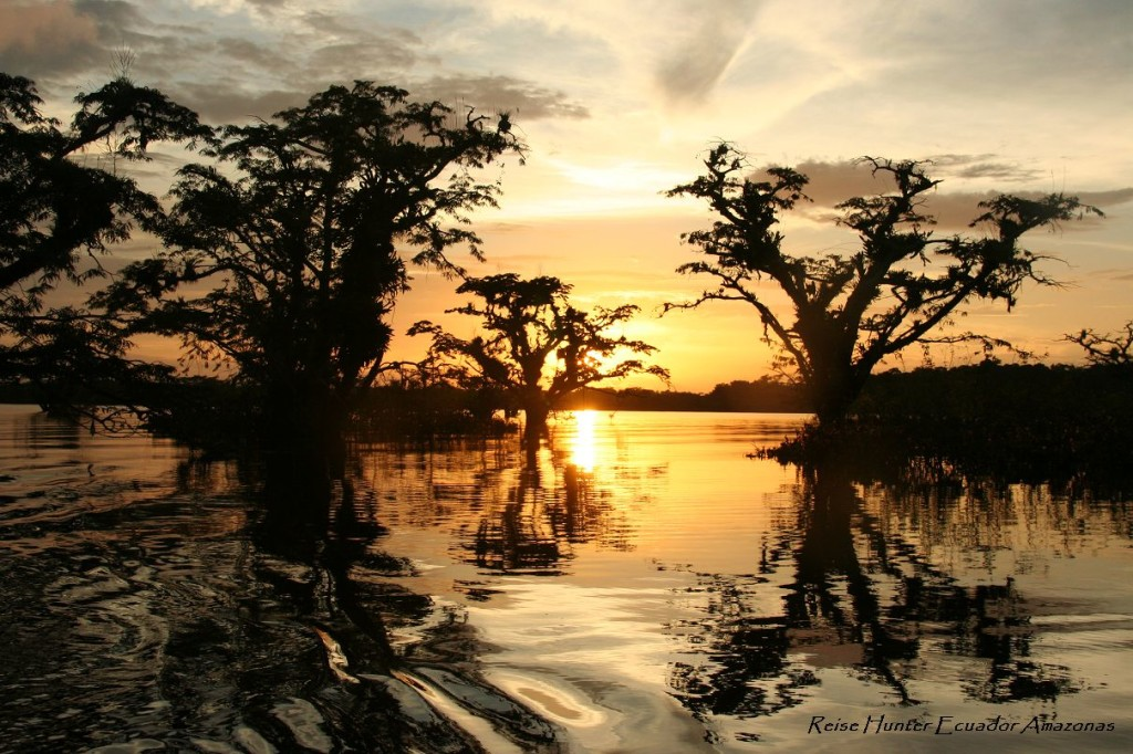 Reise Hunter Amazonas Sonnenuntergang