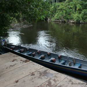 Reise Hunter Amazonas LodgeTaxi