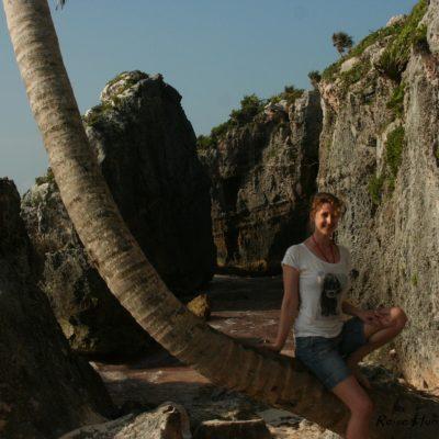 Reise Hunter Mexiko Tulum Strand Palme