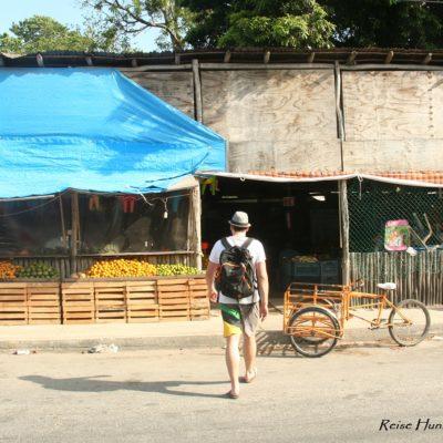 Reise Hunter Mexiko Obst Händler