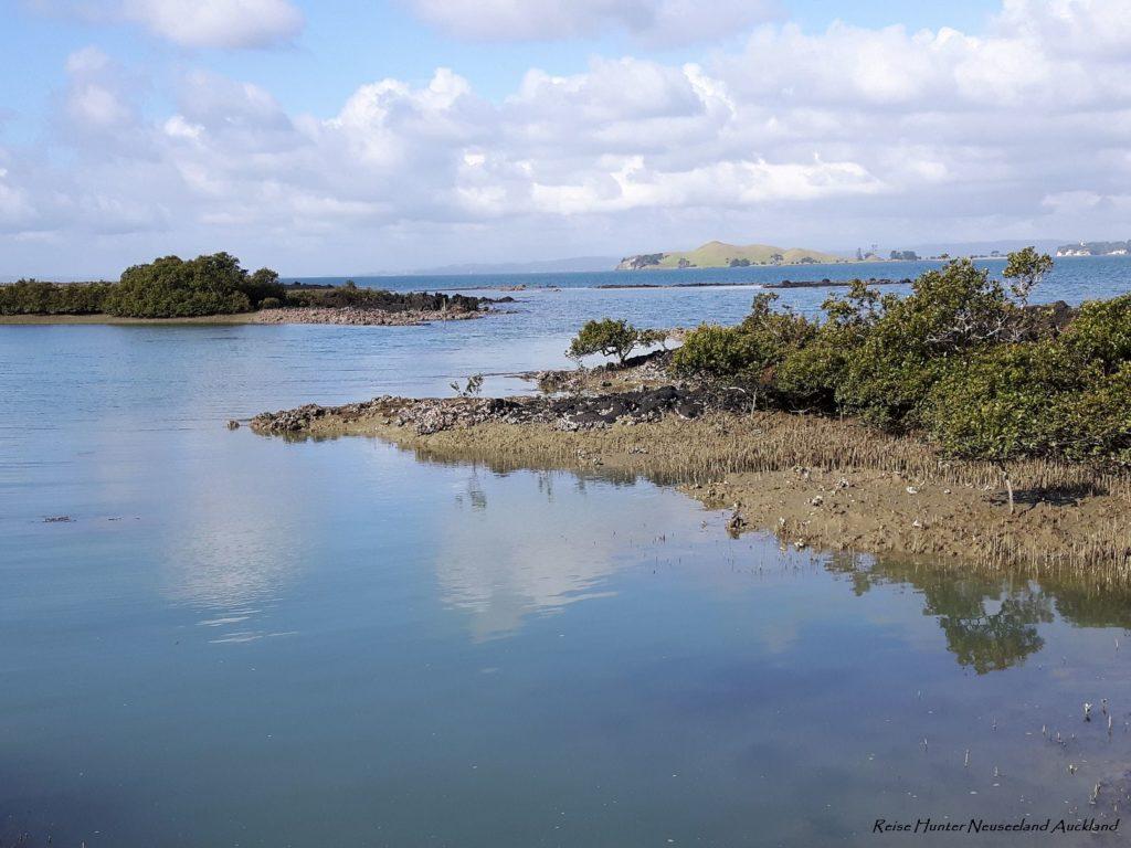 Reise Hunter Neuseeland Rangitito Island Bucht