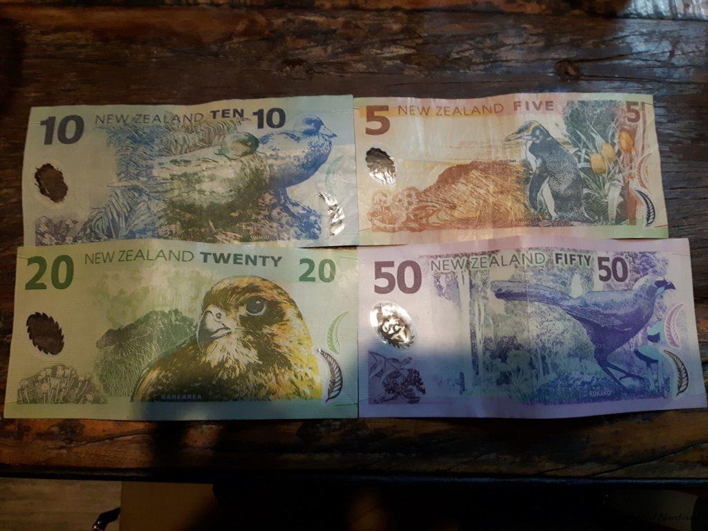 Reise Hunter Neuseeland Auckland Geld