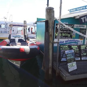 Reise Hunter Australien Port Macquarie Boot