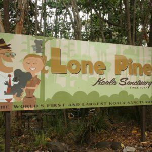 Reise Hunter Australien Lone Pine Sactary