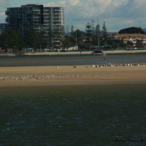 Reise Hunter Australien Surfers Pardise Sandbank