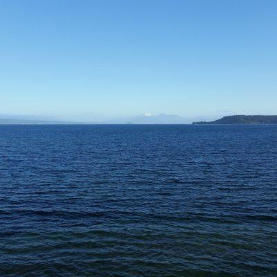 Reise Hunter Neuseeland Lake Taupo Aussicht2