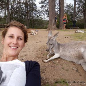 Reise Hunter Australien Lone Pine Känguruselfi