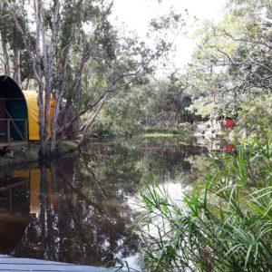 Reise Hunter Australien Byron Bay Teebauimsee