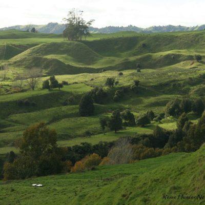 Reise Hunter Neuseeland Natur