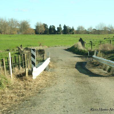 Reise Hunter Neuseeland Nordinsel Hinterland
