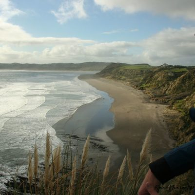 Reise Hunter Neuseeland Raglan Hauptstand