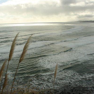 Reise Hunter Neuseeland Nordinsel Raglan Bucht