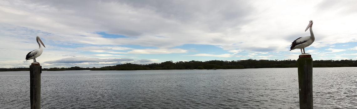 Reise Hunter Australien PortMacquarie Central Coast Titel
