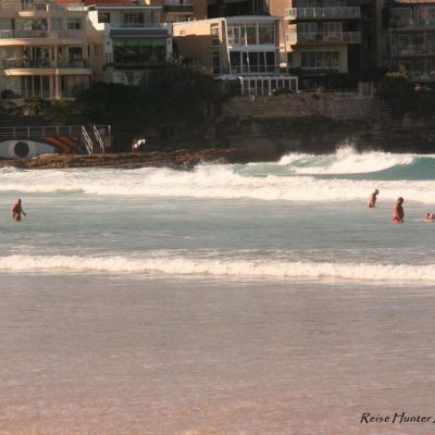 Reise Hunter Australien Sydney Bondi Beach Renterschwimmen