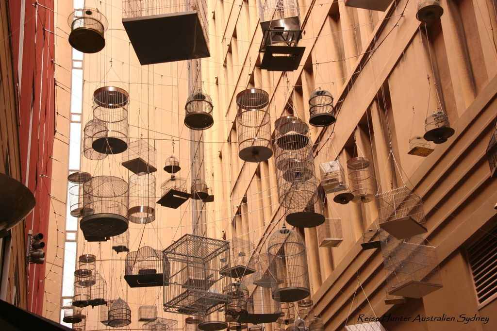 Reise Hunter Australien Sydney Straßenkunst Käfige