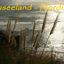 Neuseeland – Nordinsel