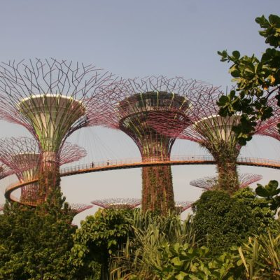 Reise Hunter Singapur Super Trees 8