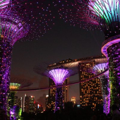 Reise Hunter Singapur Super Trees Show 10