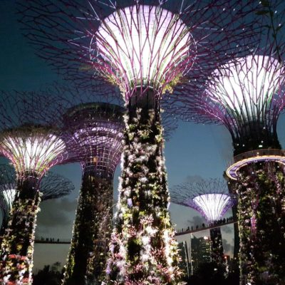 Reise Hunter Singapur Super Trees Show