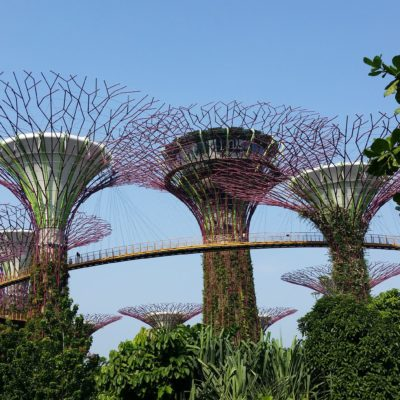 Reise Hunter Singapur Super Trees Tag