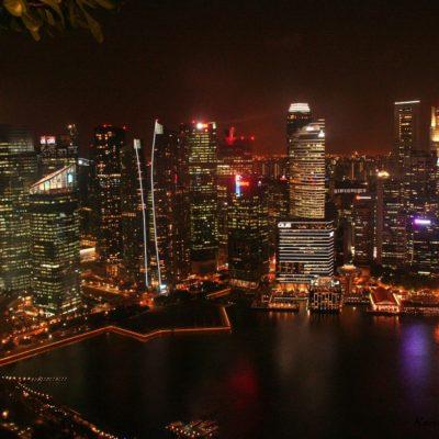 Reise Hunter Singapur von oben 3