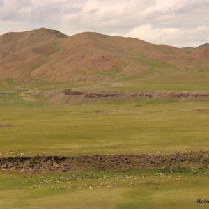 Reise Hunter Mongolei Fluss Tierherden
