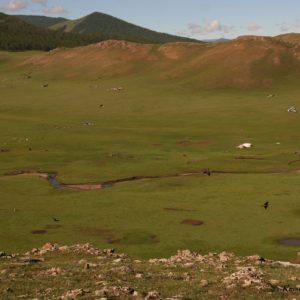 Reise Hunter Mongolei Jurtencamp4