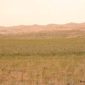 Reise Hunter Mongolei Steppe2