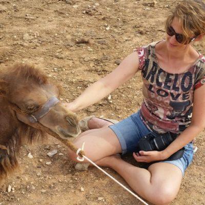 Reise Hunter Mongolei Beste Freunde2