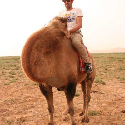 Reise Hunter Mongolei DJ und Kamel4