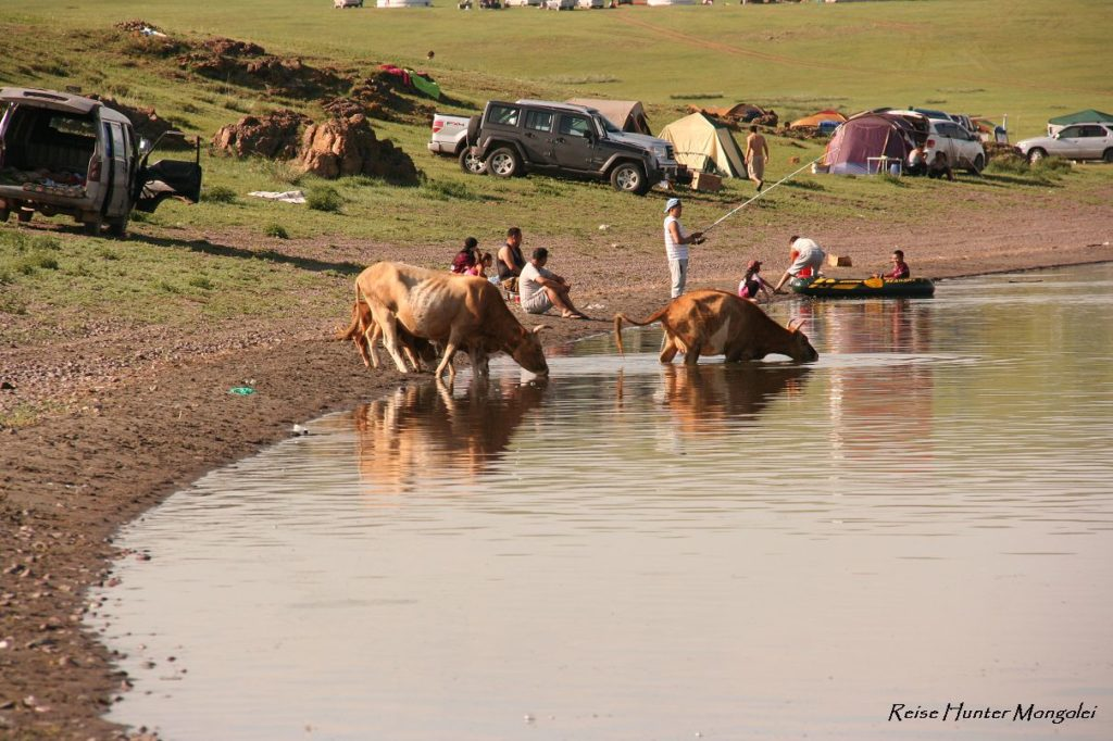 Reise Hunter Mongolei Kuhbadetag