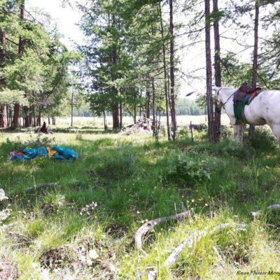 Reise Hunter Mongolei Pferdetour