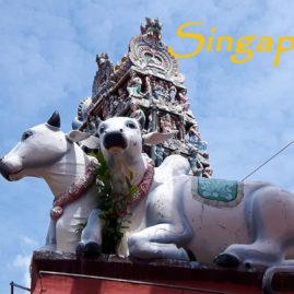Singapur-Asien für Anfänger