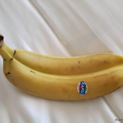 Reise Hunter Dubai Paar Banane